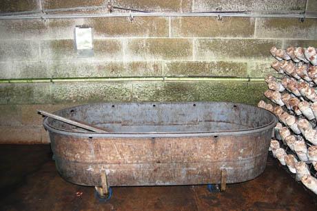 79 Log soaking tank