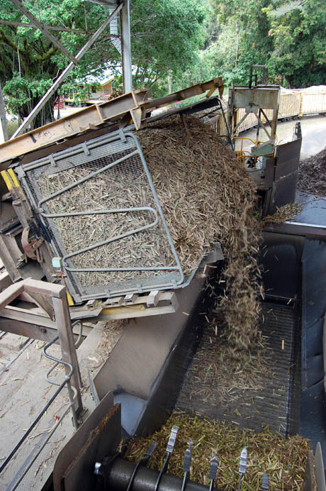 Mossman-sugarmill-emptying-a-canetainer
