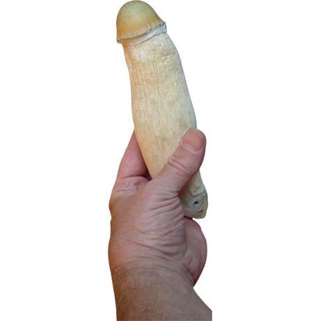 Penis Mushroom 460