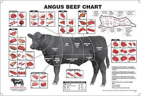 angus-beef-chart 460