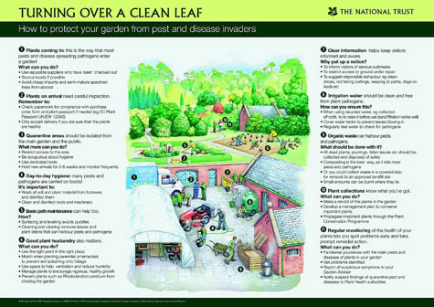 National Trust cleanleaf poster