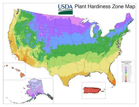 USDA_PHZM_2012_460