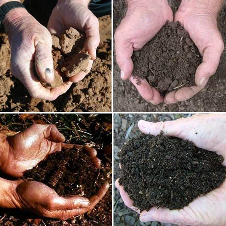 Soil hands