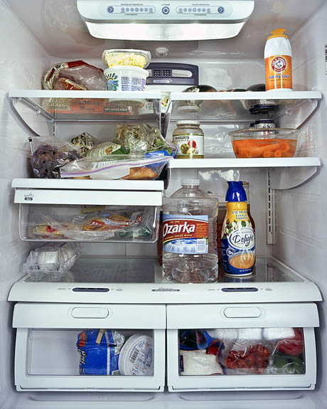 fridgeimage-16