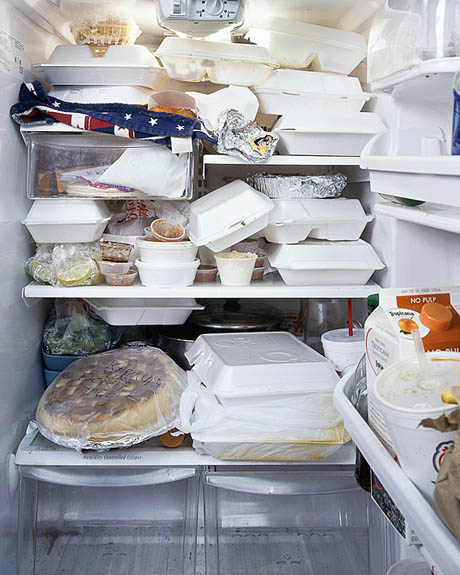 fridgeimage-8