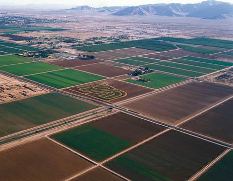 Vegetative Barriers For Erosion Control - USDA