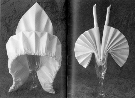 Napkin Folding Techniques With Ring