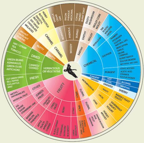 UC-Davis-Aroma-Chart