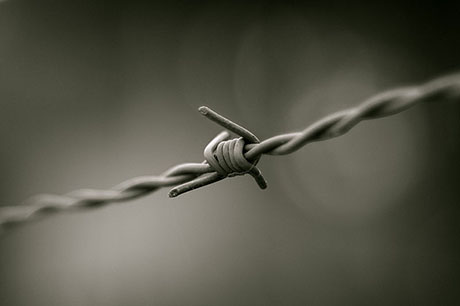 Barbed_wire_B&W 460