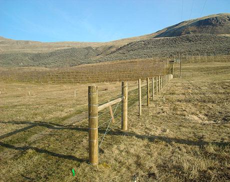 Cheyenne Pasture Fence 460