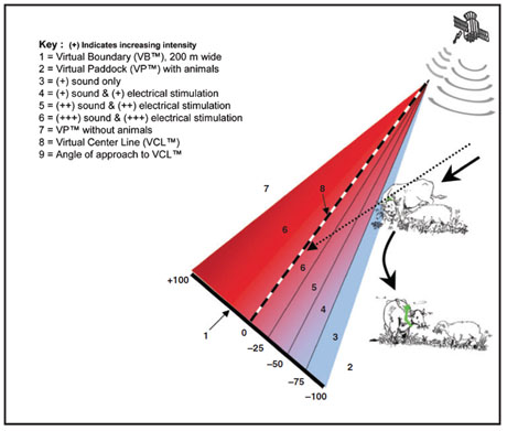 Diagram of DVF intensity gradient Anderson paper 460