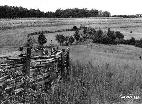 Fence 1938 460