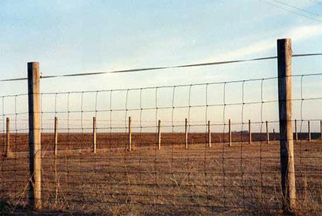 Livestock-Fencing 460
