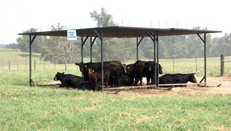 Portable shade structure 460