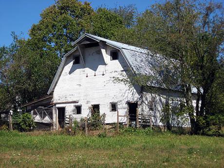 White Barn 460