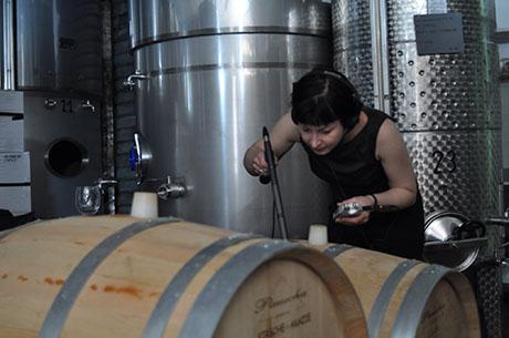 Recording-a-fermentation 460