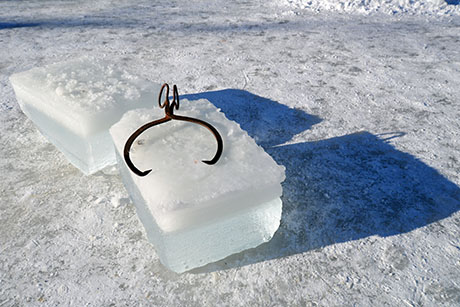 220 Ice block with tongs on it 460