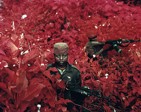 Richard Mosse 460