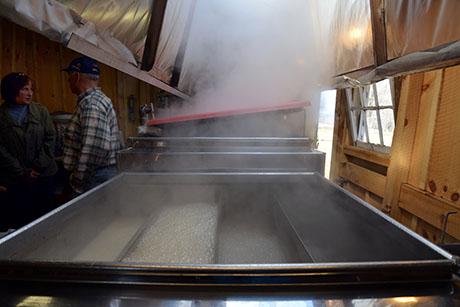 9 Maple evaporator Soukup 460