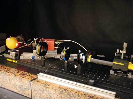 Laser Biospeckle Experiment